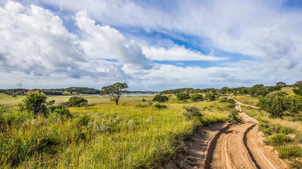 Infinite_Africa_Travel_Mozambique_Anvil_Bay_Elephant_Reserve_Dirtroad