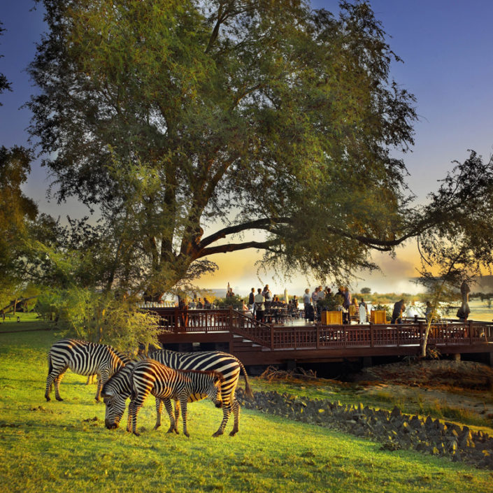 infinite_africa_travel_zimbabwe_royal_livingstone_deck_at_sunset_with_zebras