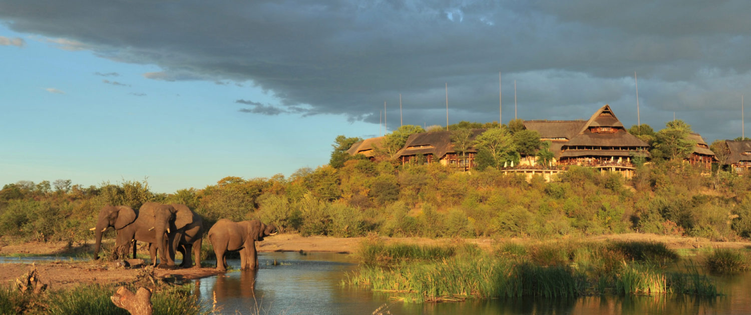 infinite_africa_travel_zimbabwe_victoria_falls_safari_lodge_lodge_and_elephants